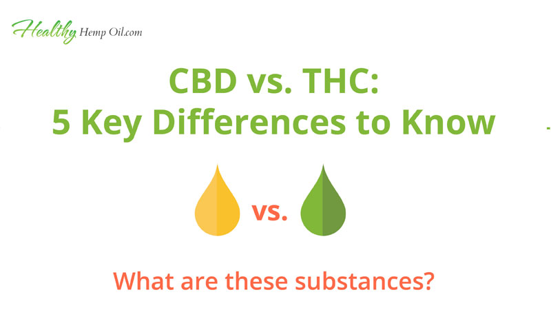 CBD vs. THC | Infographic