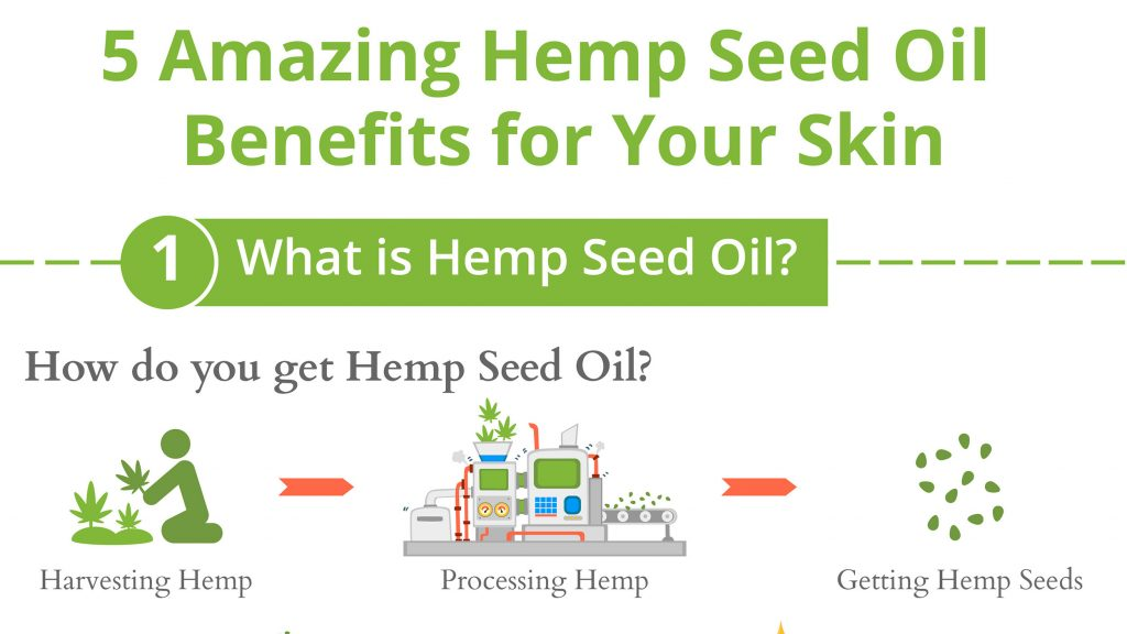 5 Amazing Hemp Seed Oil Benefits Infographic 1